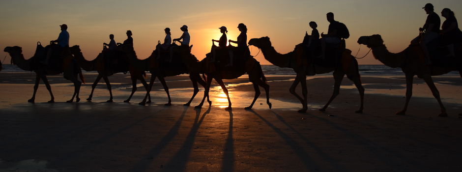 Cable Beach camels, Broome