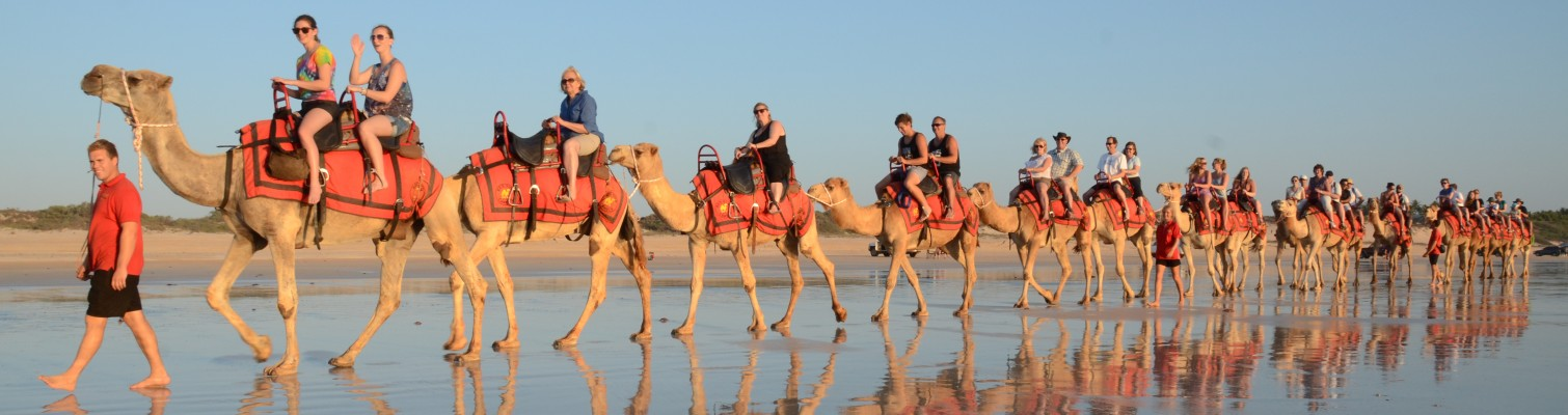 Red Camels, Broome